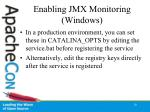 enabling jmx monitoring windows