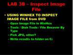 lab 3b inspect image file