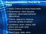 documentation focus is you46