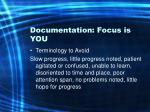 documentation focus is you48
