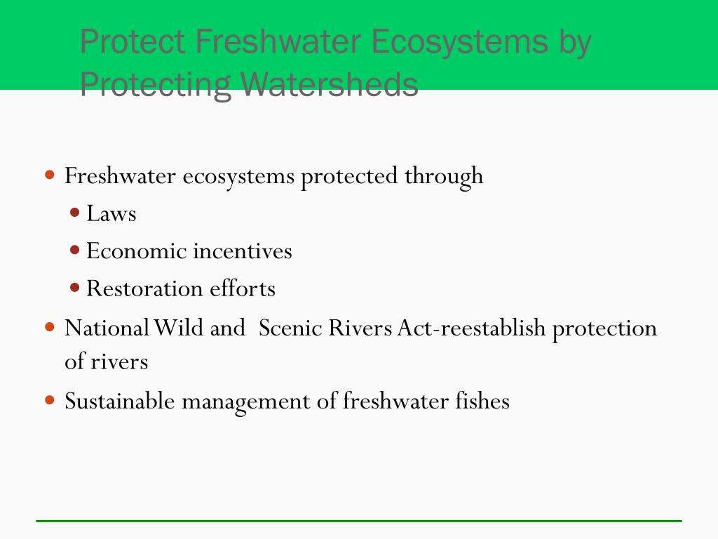 Protect Freshwater Ecosystems by Protecting Watersheds