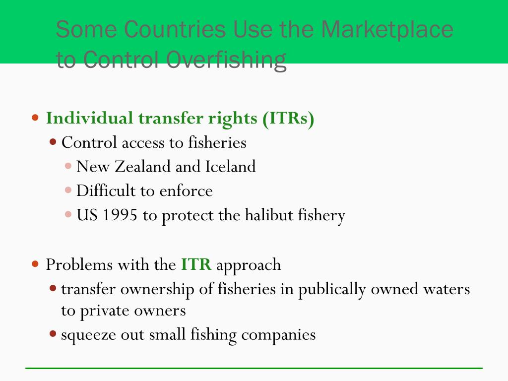 Some Countries Use the Marketplace to Control Overfishing