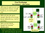 gas exchange ion transport aba action