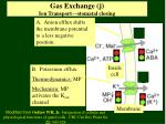 gas exchange j ion transport stomatal closing