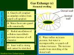 gas exhange e stomatal swelling