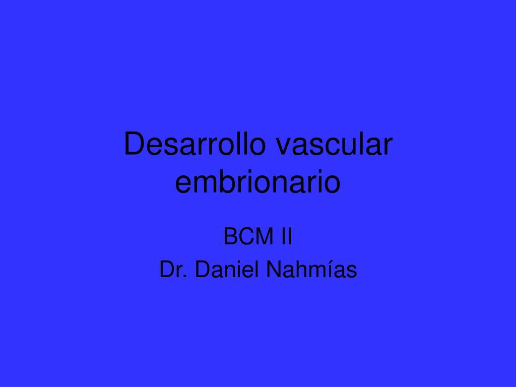desarrollo vascular embrionario l.