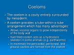 coeloms