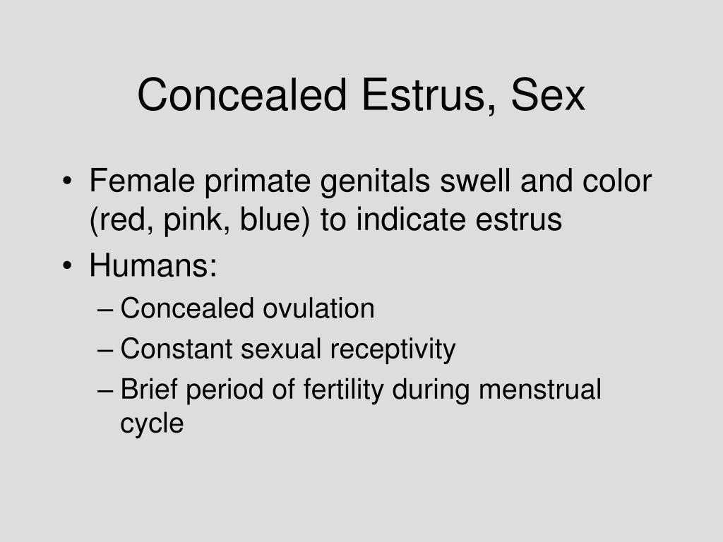 Concealed Estrus, Sex