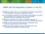emea and the regulatory system in the eu