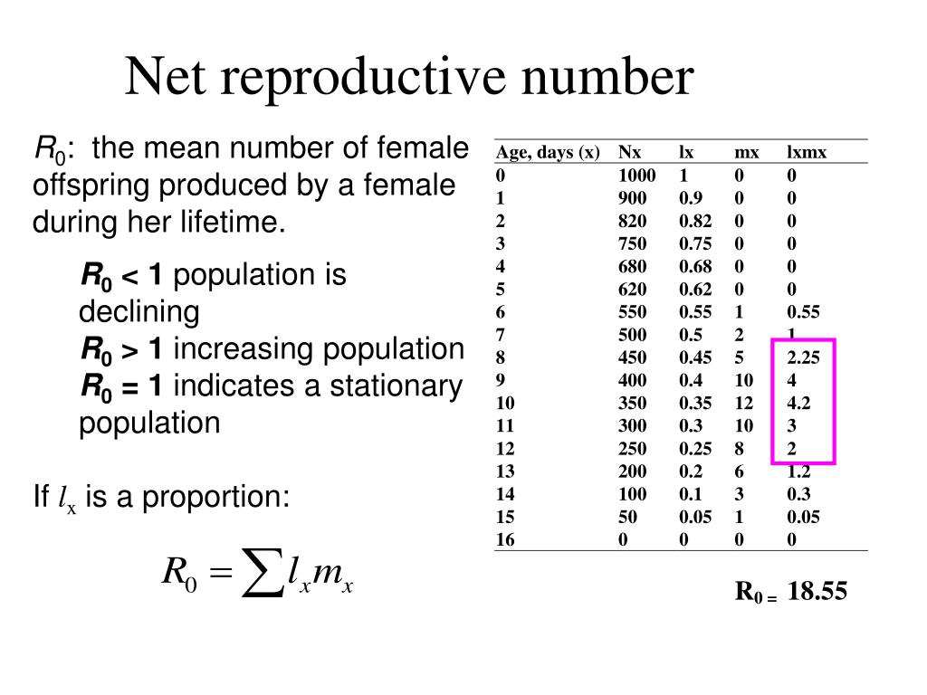 Net reproductive number