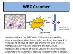 wbc chamber