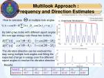 multilook approach frequency and direction estimates