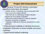 project self assessment
