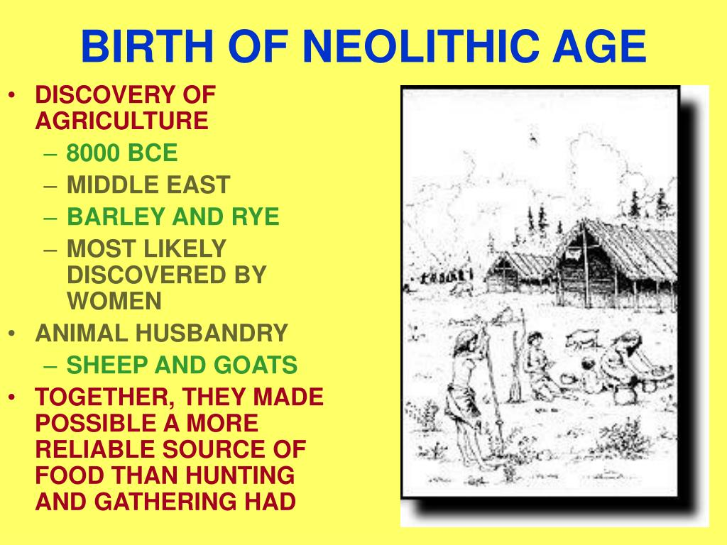BIRTH OF NEOLITHIC AGE