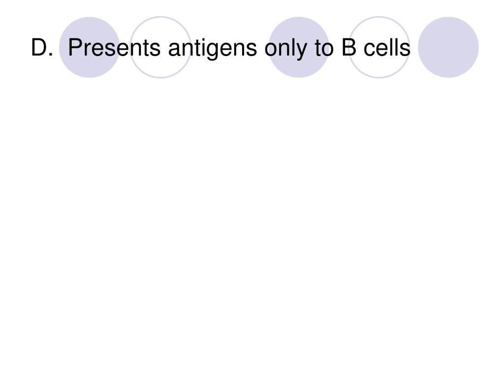 D.  Presents antigens only to B cells