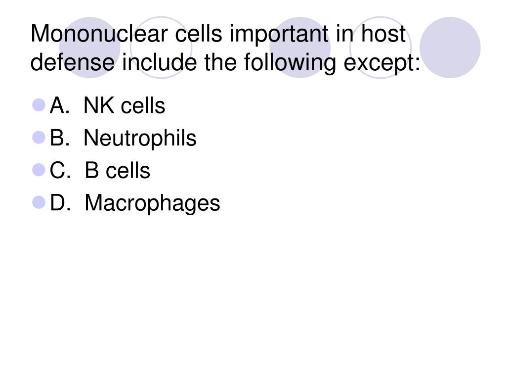 Mononuclear cells important in host defense include the following except: