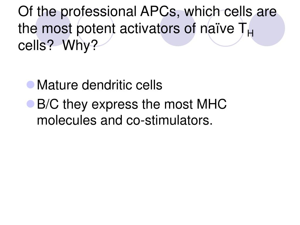Of the professional APCs, which cells are the most potent activators of naïve T