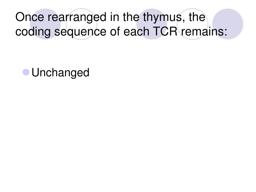 Once rearranged in the thymus, the coding sequence of each TCR remains: