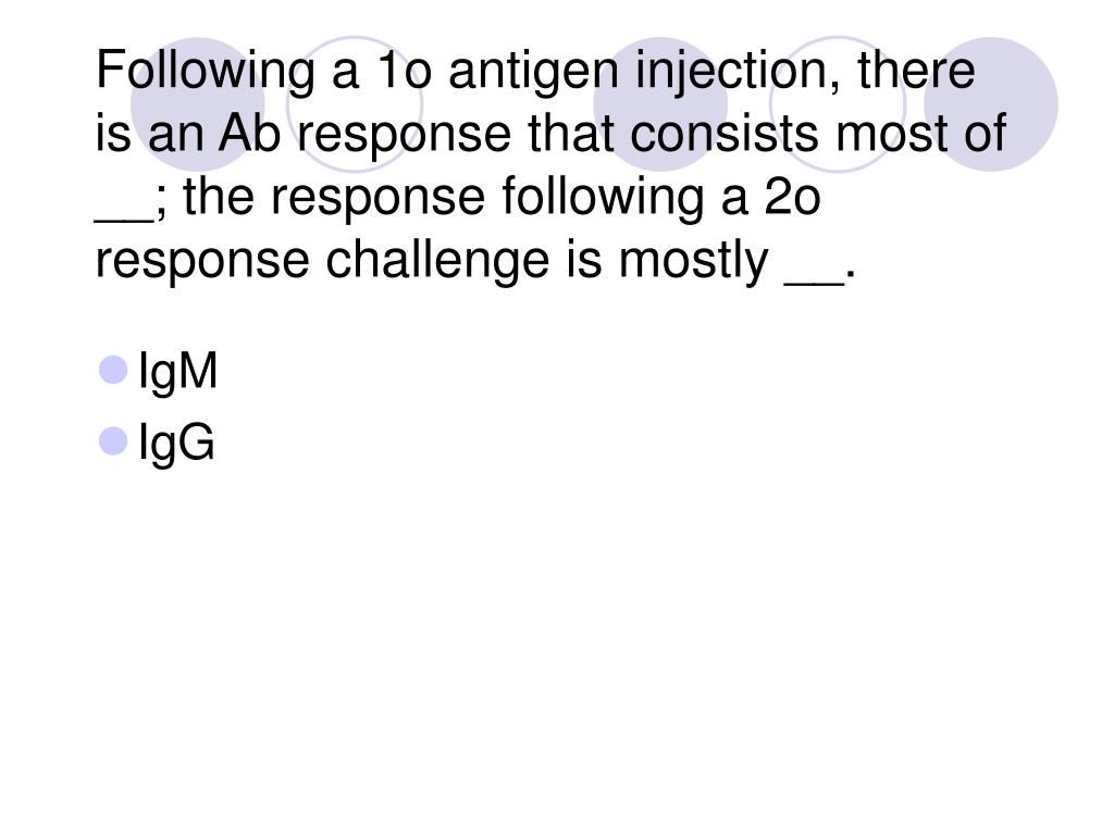 Following a 1o antigen injection, there is an Ab response that consists most of __; the response following a 2o response challenge is mostly __.