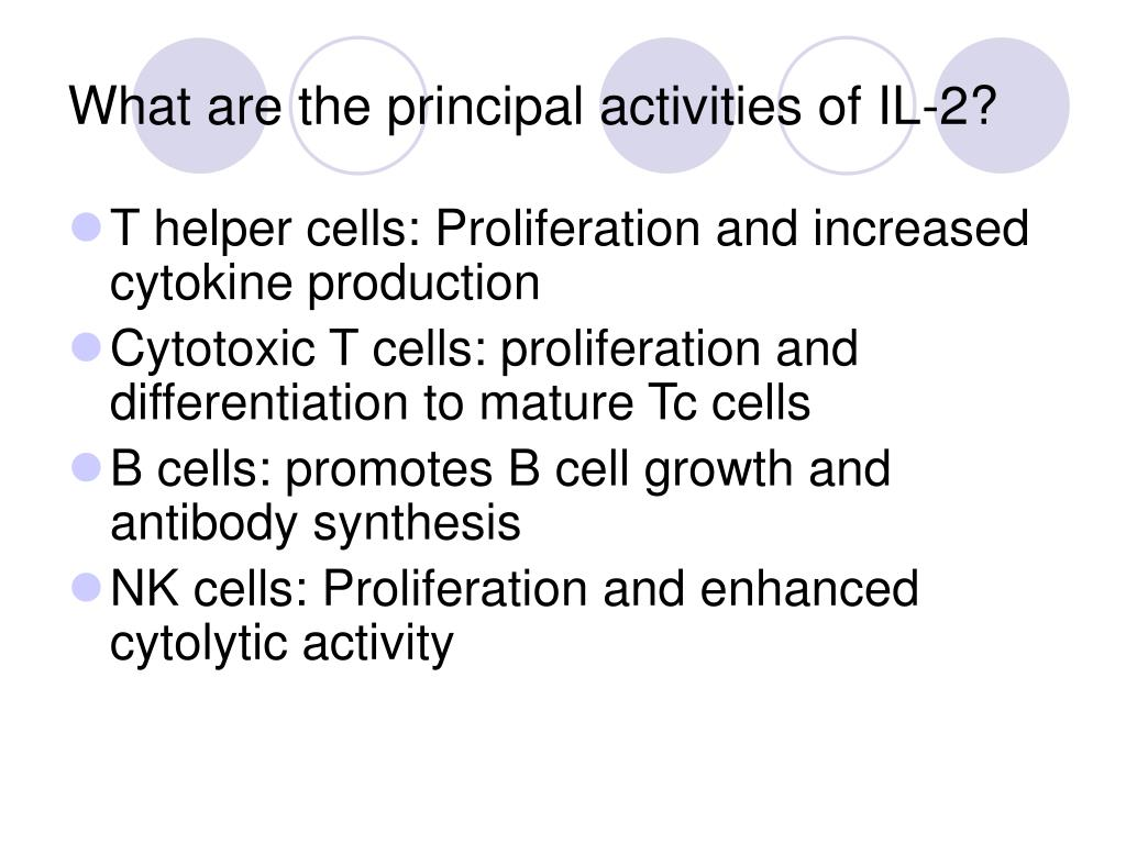 What are the principal activities of IL-2?