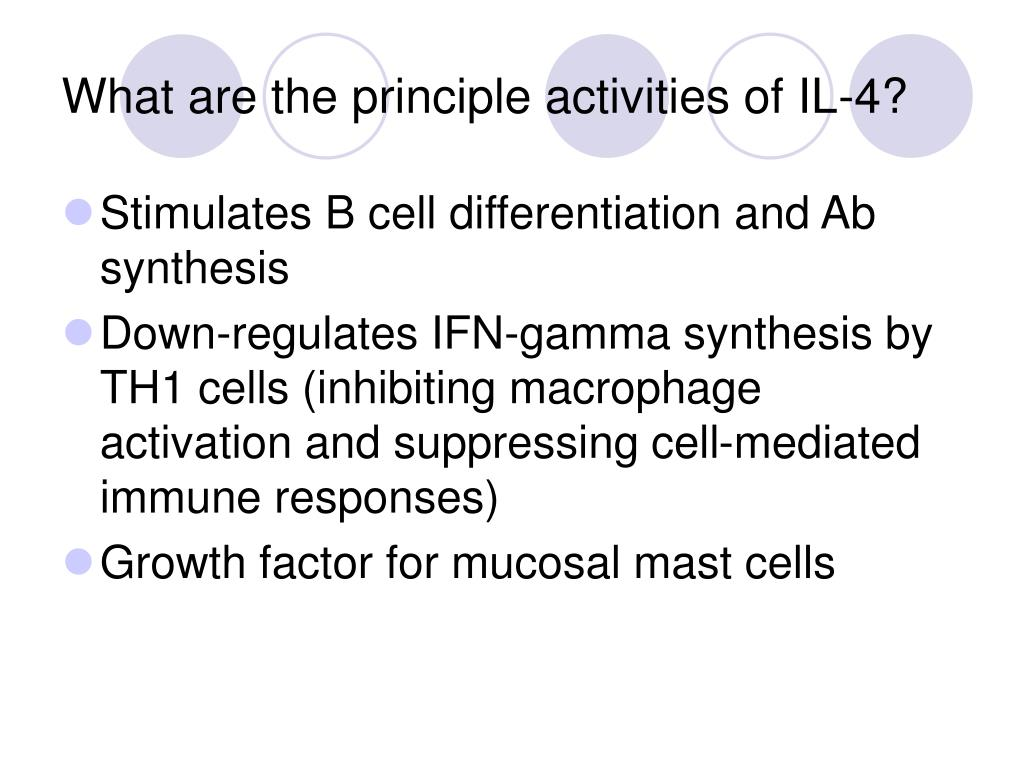 What are the principle activities of IL-4?