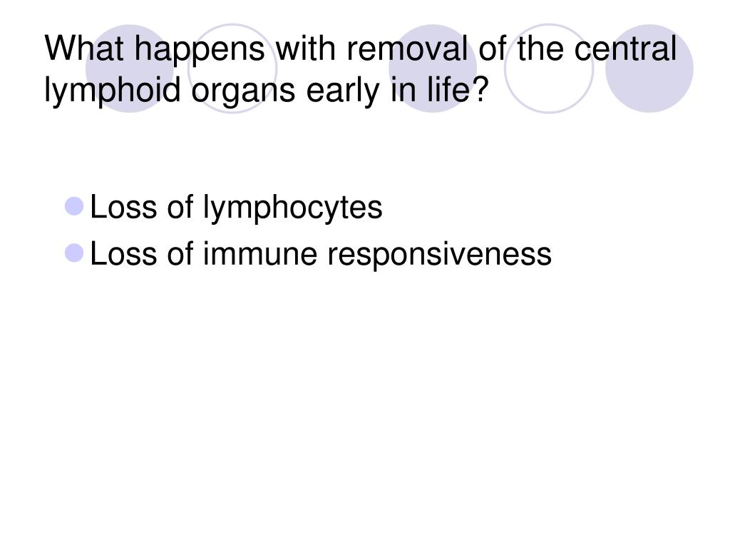 What happens with removal of the central lymphoid organs early in life?