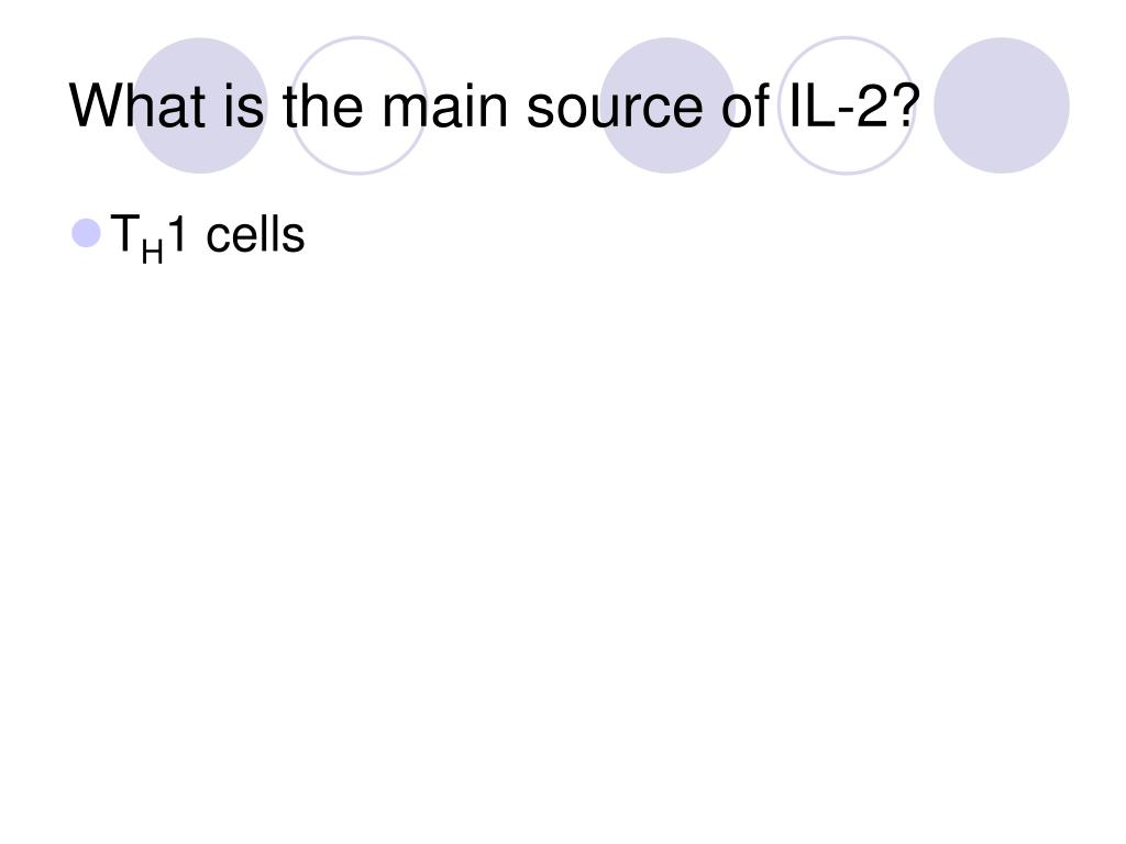 What is the main source of IL-2?