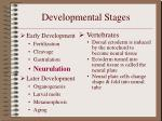 developmental stages10