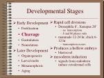 developmental stages5