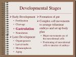 developmental stages6