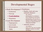 developmental stages8