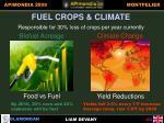 fuel crops climate