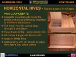 horizontal hive easiest access