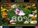 importance of pollination in food chain