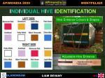 individual hive identification
