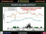 river island effect