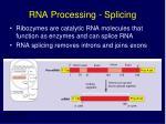 rna processing splicing16