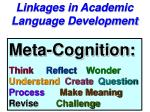 linkages in academic language development