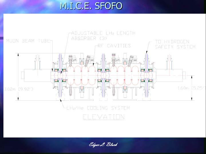 M.I.C.E. SFOFO
