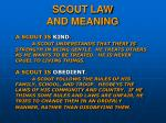 scout law and meaning13