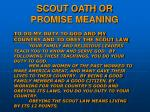 scout oath or promise meaning7