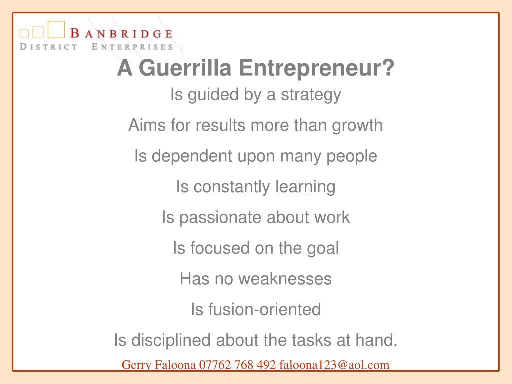 A Guerrilla Entrepreneur?