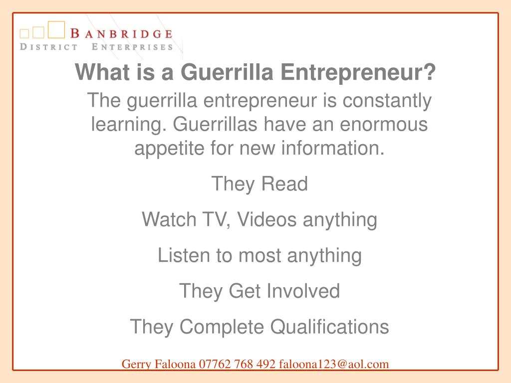What is a Guerrilla Entrepreneur?