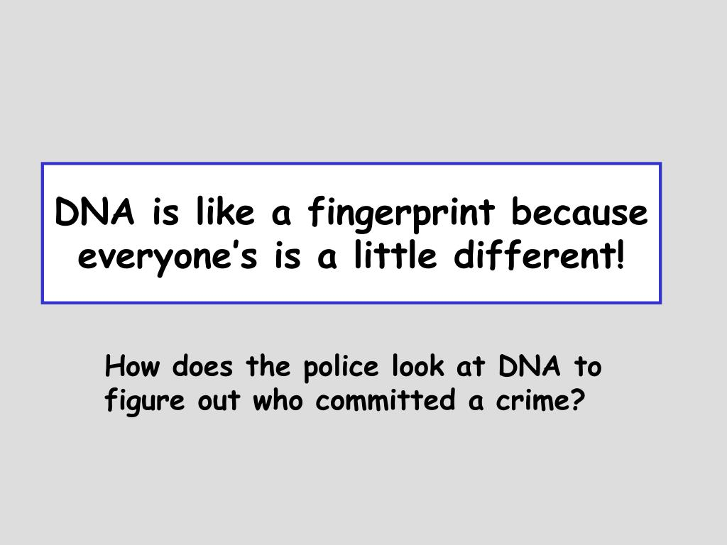DNA is like a fingerprint because everyone's is a little different!