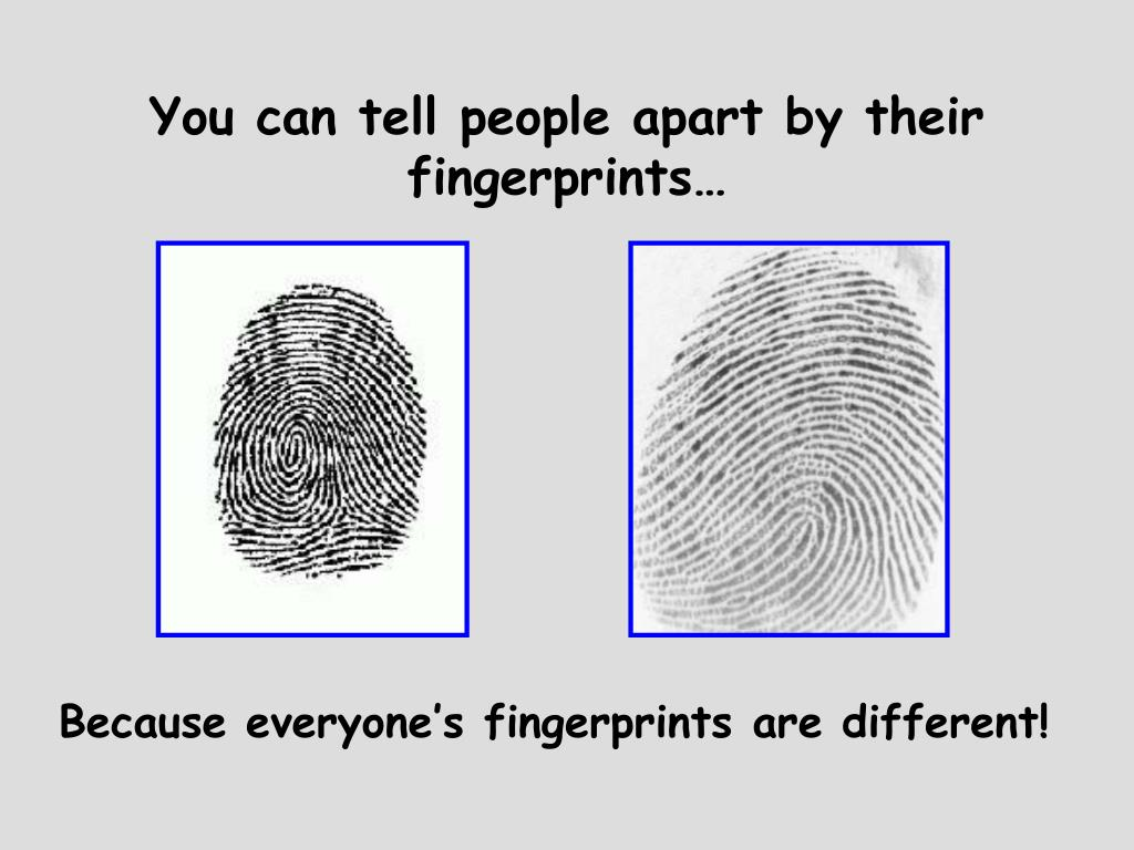 You can tell people apart by their fingerprints…