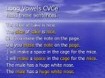 long vowels cvce read these sentences