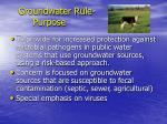 groundwater rule purpose