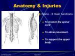 anatomy injuries