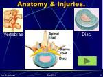 anatomy injuries8