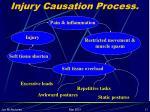 injury causation process